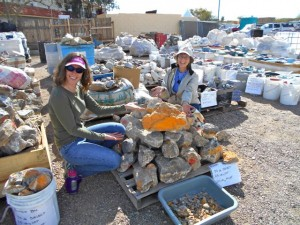 Holly & Bonnie liked the Bumblebee at El Paso Rock Shop.